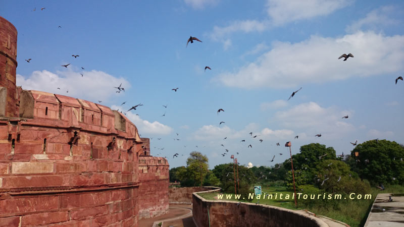 Agra Packages - Red Fort