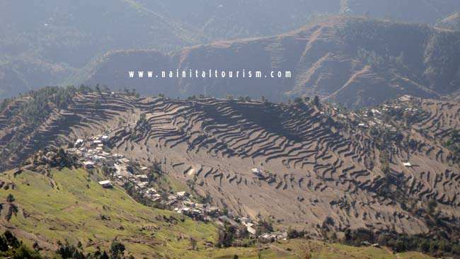 Ranikhet - Panorama of the Great Himalayas - Ancient Temples - Beautiful Terrain