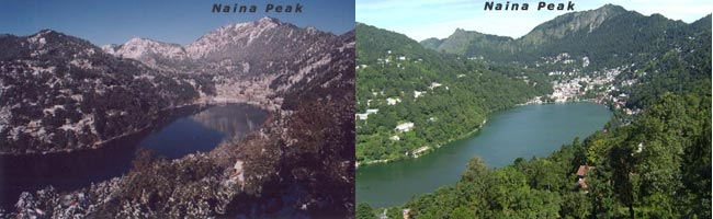 Eagles Eye View of Green Nainital City From Naina Peak